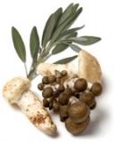 D'Olivo Wild Mushroom and Sage Infused Olive Oil