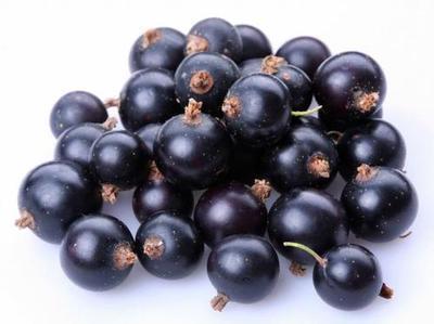 D'Olivo Black Currant Balsamic Vinegar