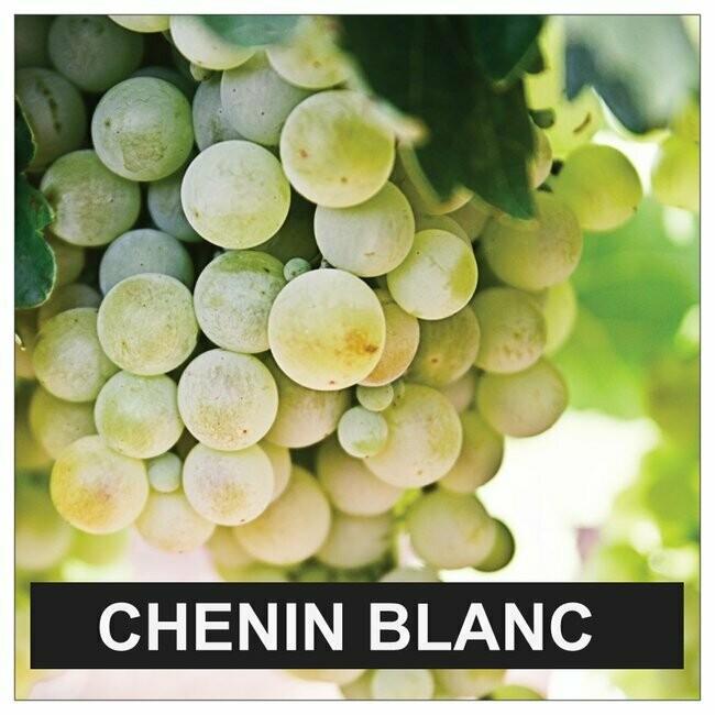 Proefpakket Chenin Blanc