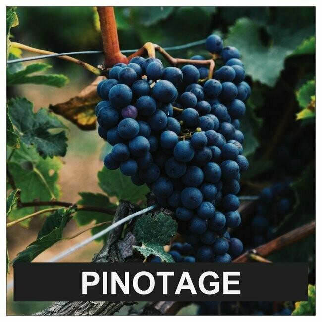 Proefpakket Pinotage