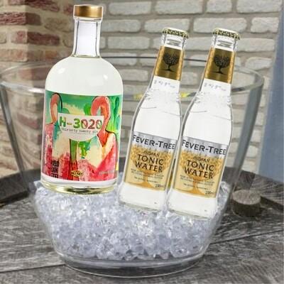 B-3060 Gin + ijsemmer + 2 tonic