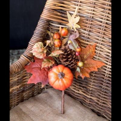Autumn Bounty Pick
