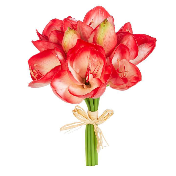 """Floral Red Amaryllis Bundle 12"""""""