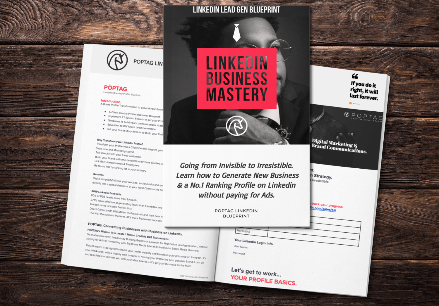 LinkedIn Newbies e-book. A practical step by step program to implementing a killer profile.