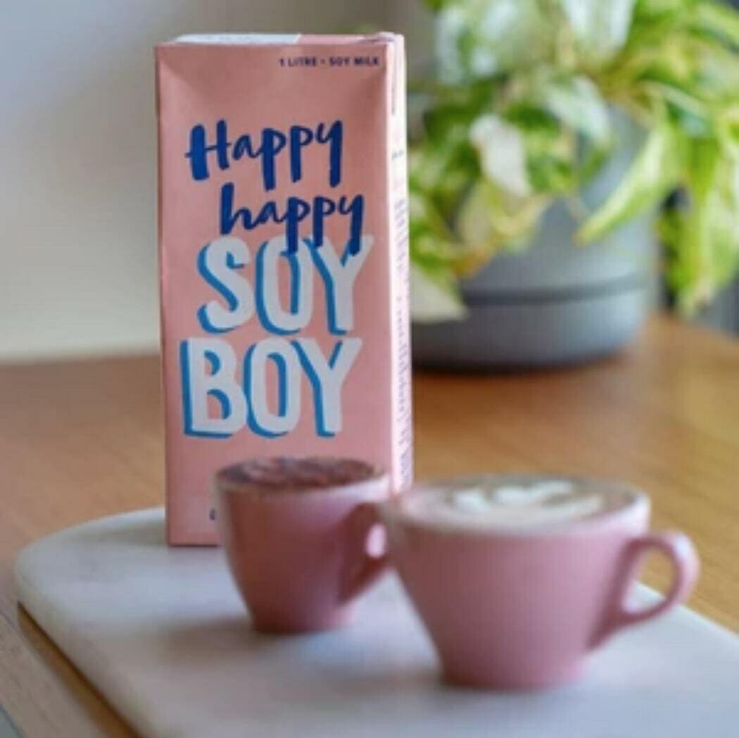 Happy, Happy Soy Boy