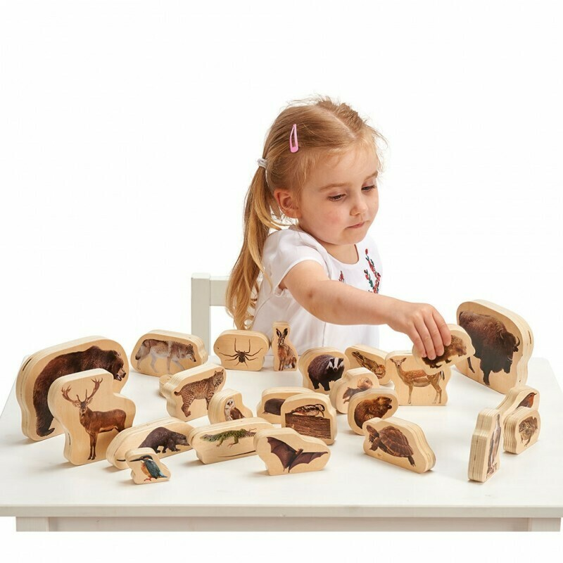 Wooden Forest Animal Blocks