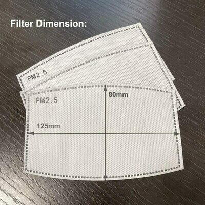 Filters for Reusable Safety Masks