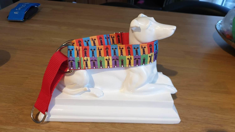 Collar 'Semaphore Ears' Richard Skipworth (Broocie's Fundraising)