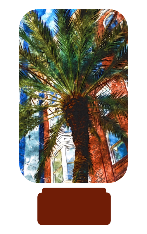 New Orleans - Quarter Toss Game Sublimation PNG