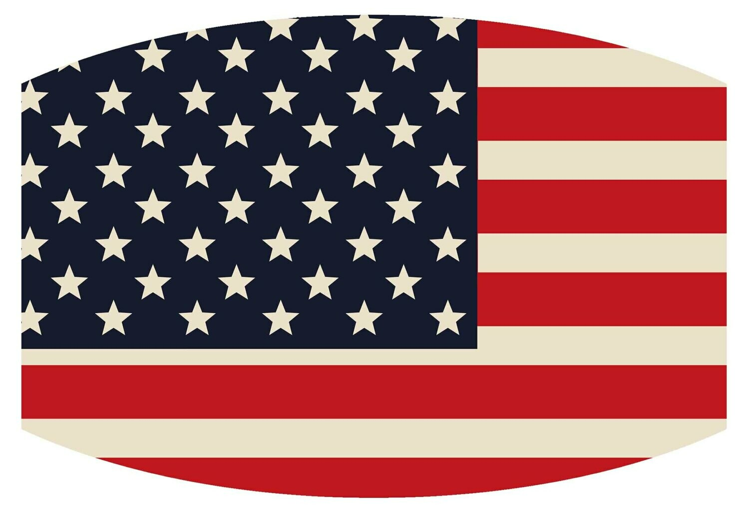 """American Flag"" Non-medical Mask"