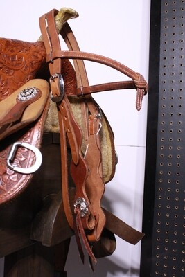 Plain Browband Futurity Knot Head Stall with Stainless Steel Conchos and Leather Ties