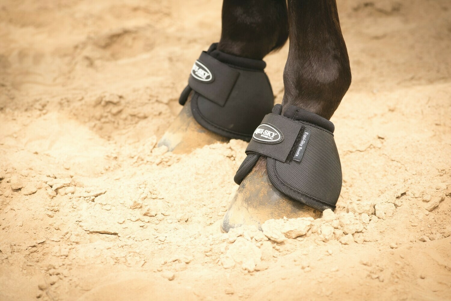 FRANCOIS GAUTHIER Equi Sky No Turn Bell Boots