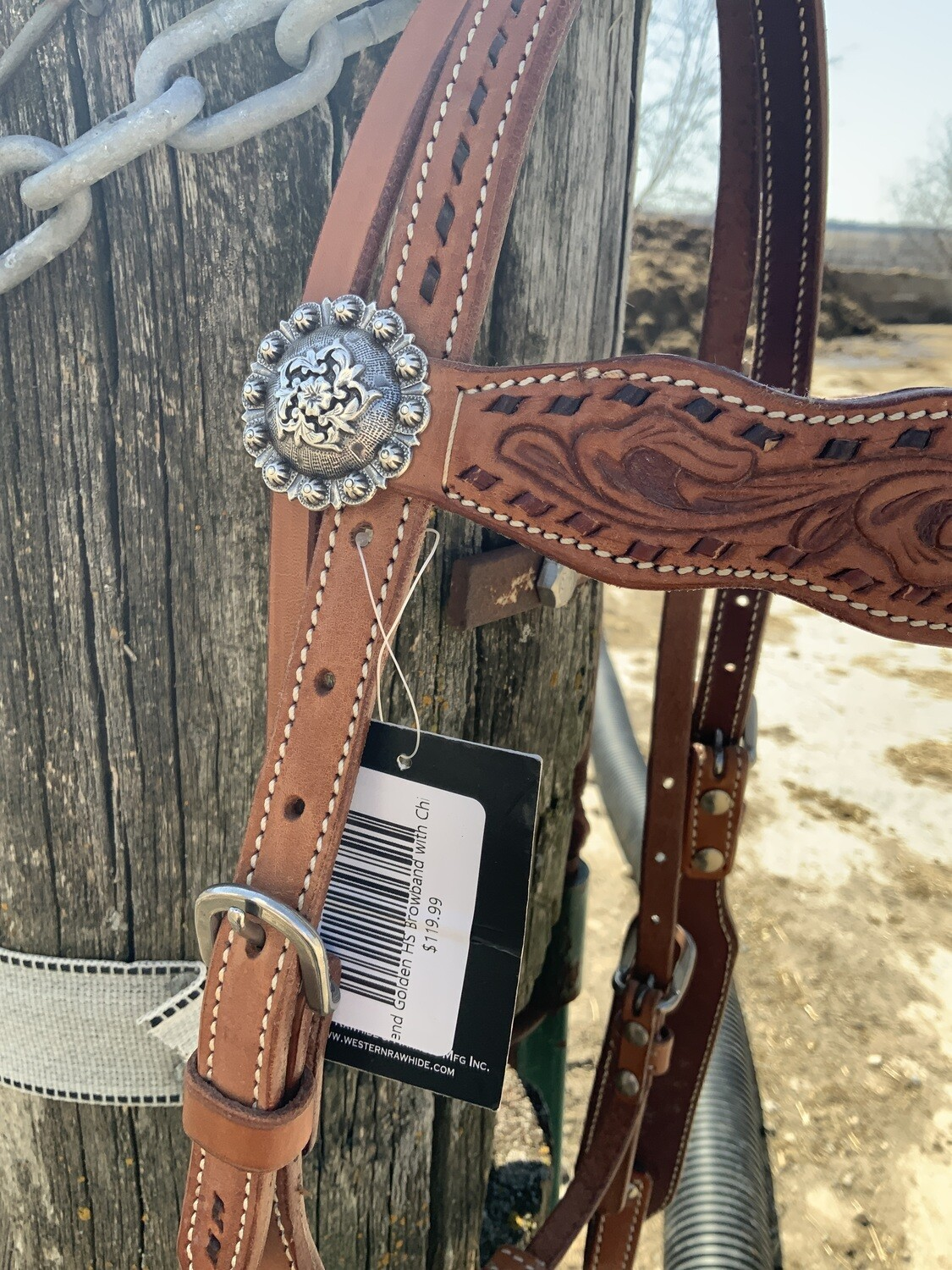 Country Legend Golden HS Browband with Chicago Screws