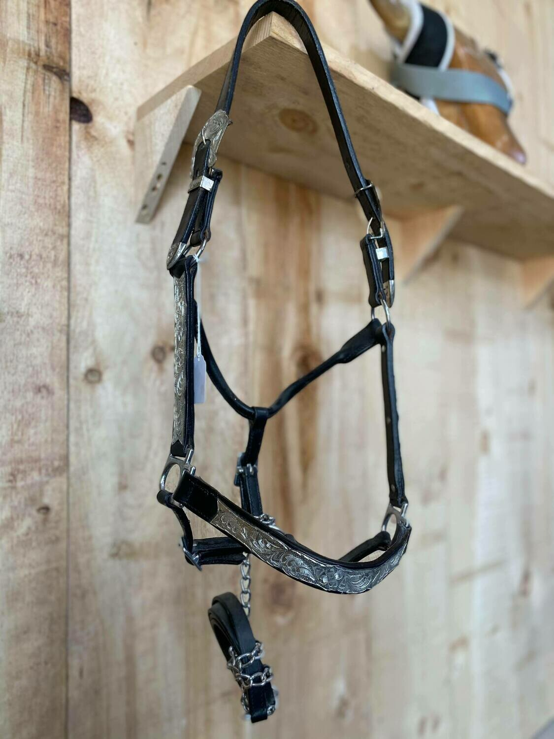 Black Leather Show Halter with Tooled Silver-Average