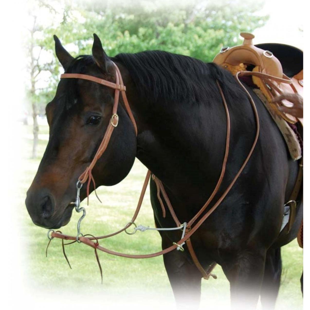 Harness Leather Sliding Fork Martingale