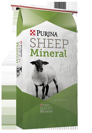 Sheep Mineral