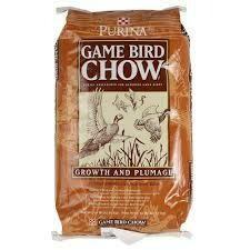 Game Bird
