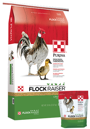 Purina Flock Raiser Crumble