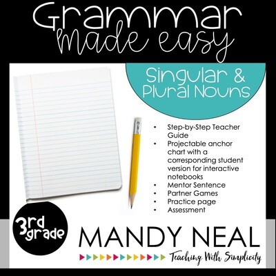 Third Grade Grammar Activities (Singular & Plural Nouns)