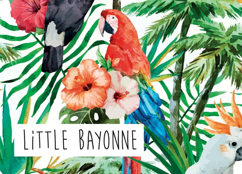 Carte Postale - Perroquet Bayonnais