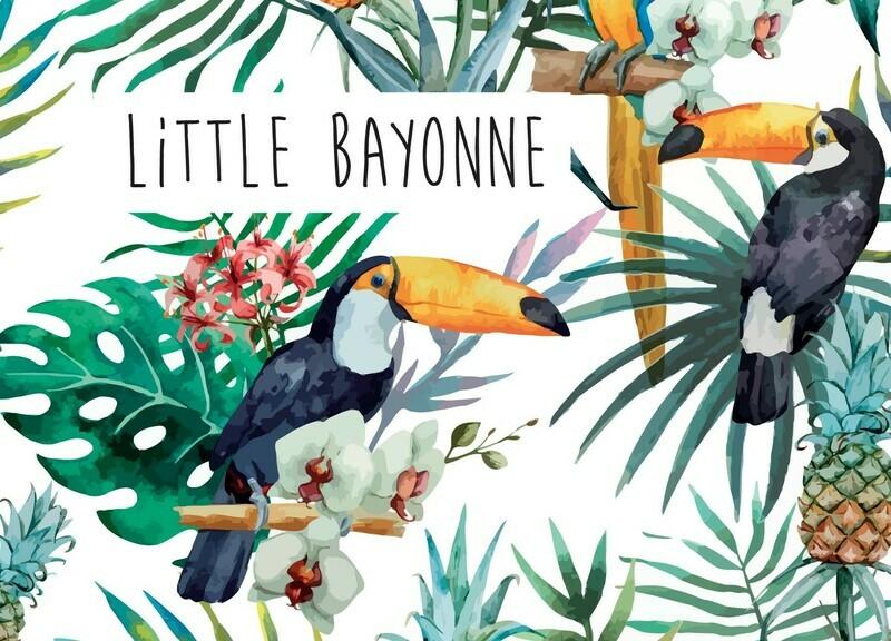 Carte Postale - Toucan Bayonnais