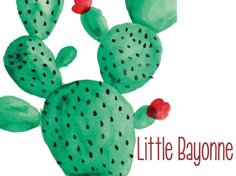 Carte Postale - Cactus