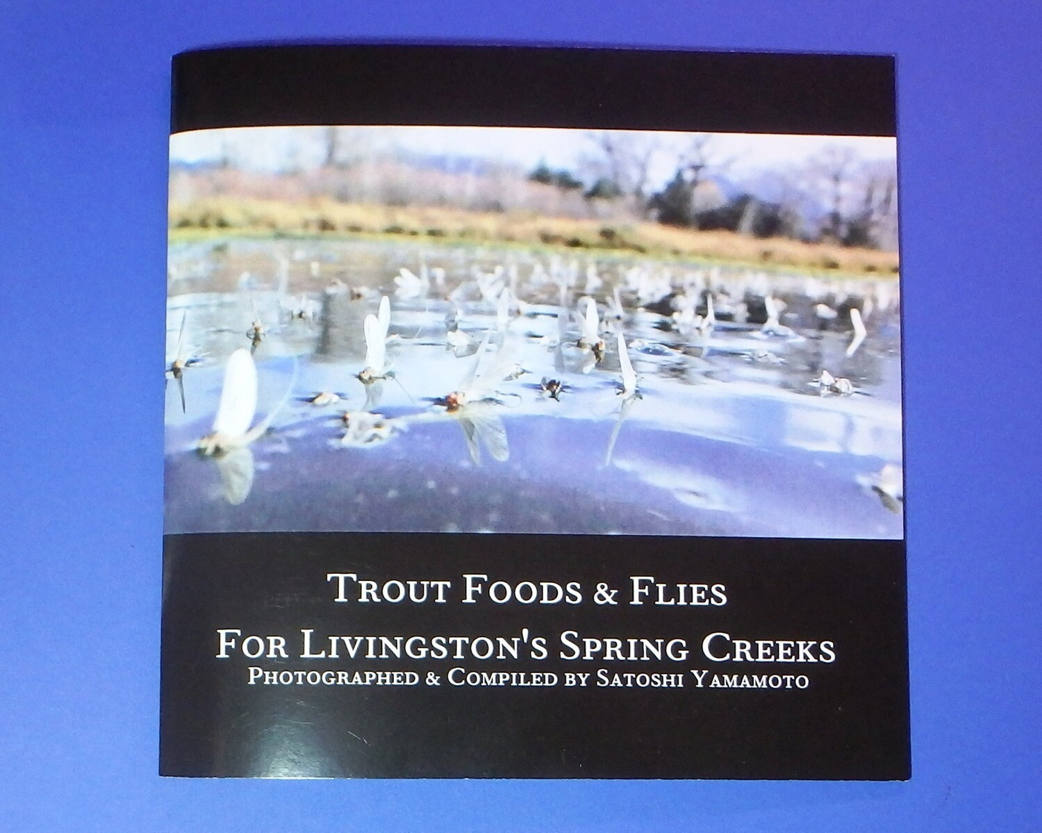 Trout Foods & Flies For Livingston's Spring Creeks