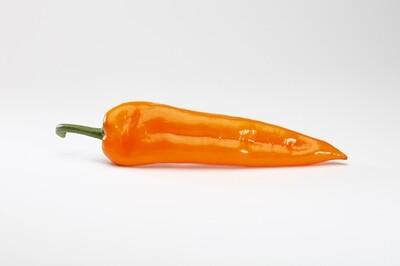 Paprika zoetpunt Oranje