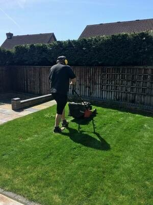 Garden Maintenance (1 Person)