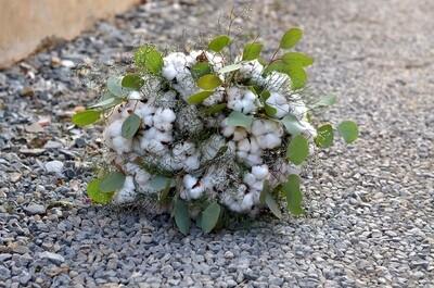 Bouquet de Coton