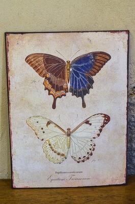 Cadre papillon en métal