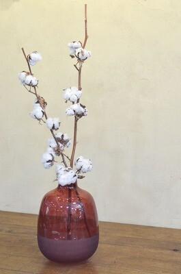 Bouquet de Coton en vase rouge