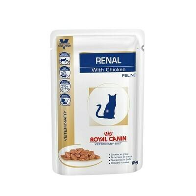 Royal canin Alimento húmedo gato