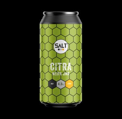 Salt Beer Factory - Citra