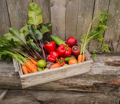 Ro Medium Veg Box