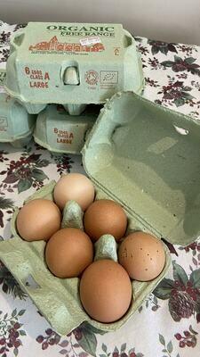 Organicly Farmed Eggs