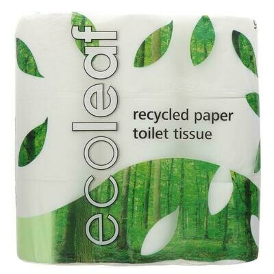 Recycled Toilet Roll