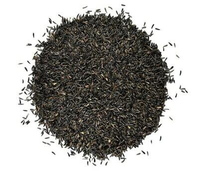 Feldy Nyger Seeds