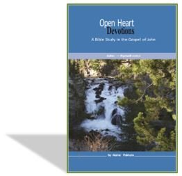 Open Heart Devotions - The Gospel of John by Alaine Pakkala, Ph.D.