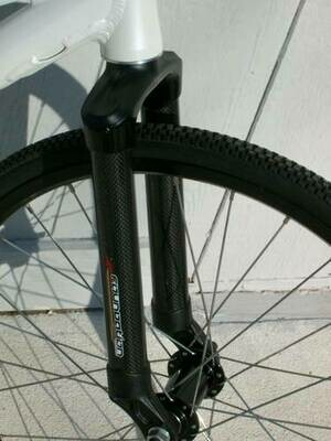 Formco Expert Cruiser Carbon fork 1inch