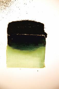 Powertex Bister Powder - Green 30g