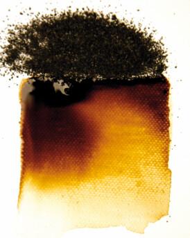 Powertex Bister Powder - Brown 30g