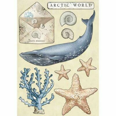Stamperia Coloured Wooden Shapes A5 - Arctic World