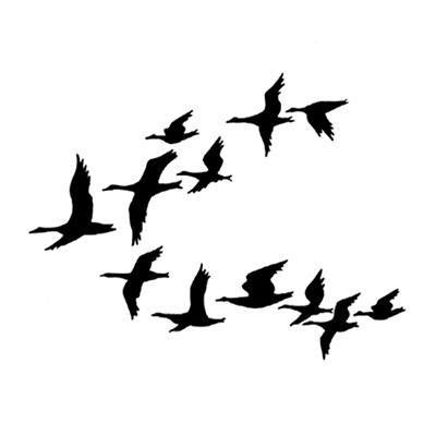Lavinia Stamps - Ducks