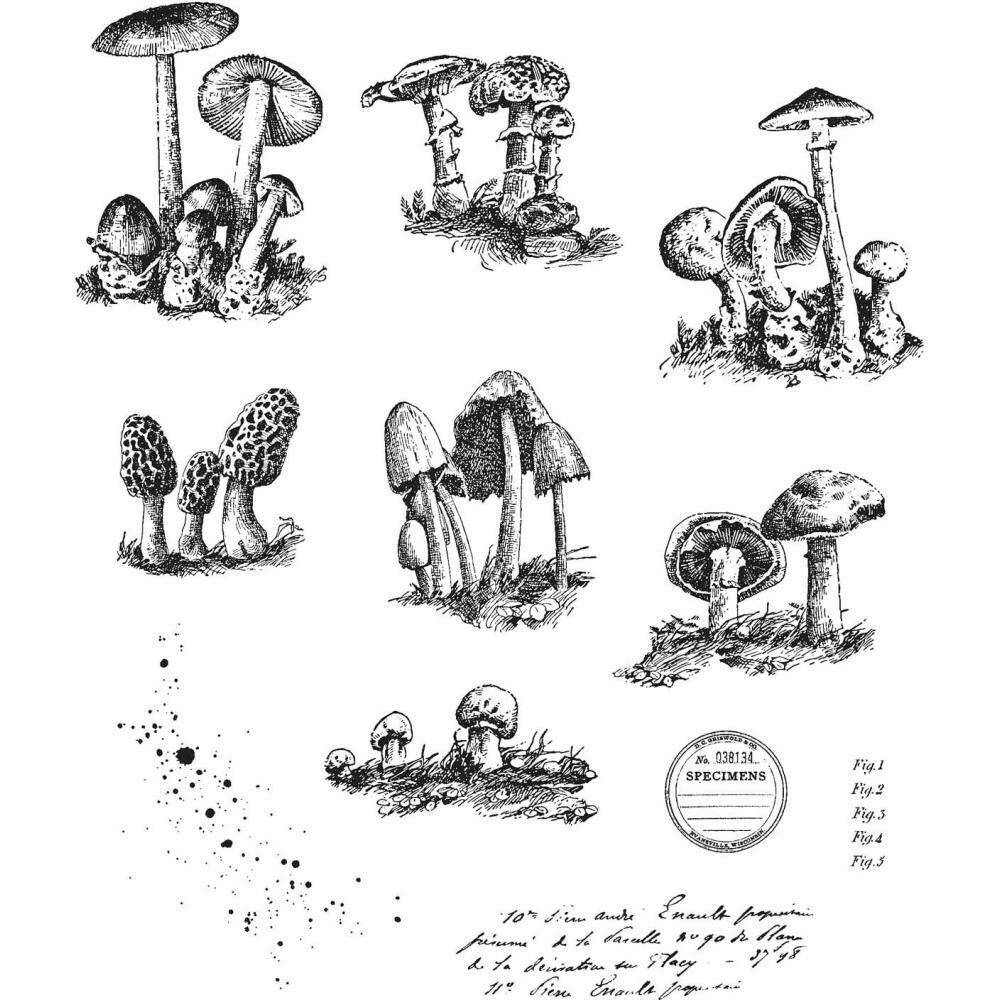 "Tim Holtz Cling Stamps 7""X8.5"" - Tiny Toadstools"