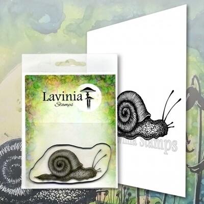 Lavinia Stamps - Samuel