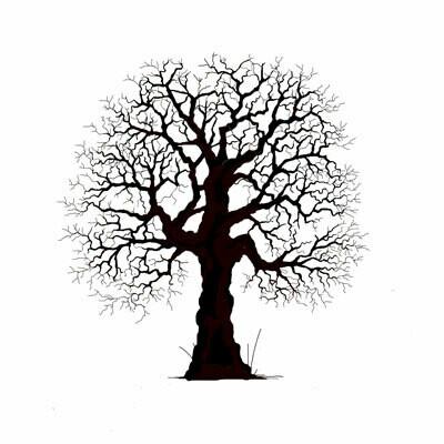 Lavinia Stamps - Oak Tree
