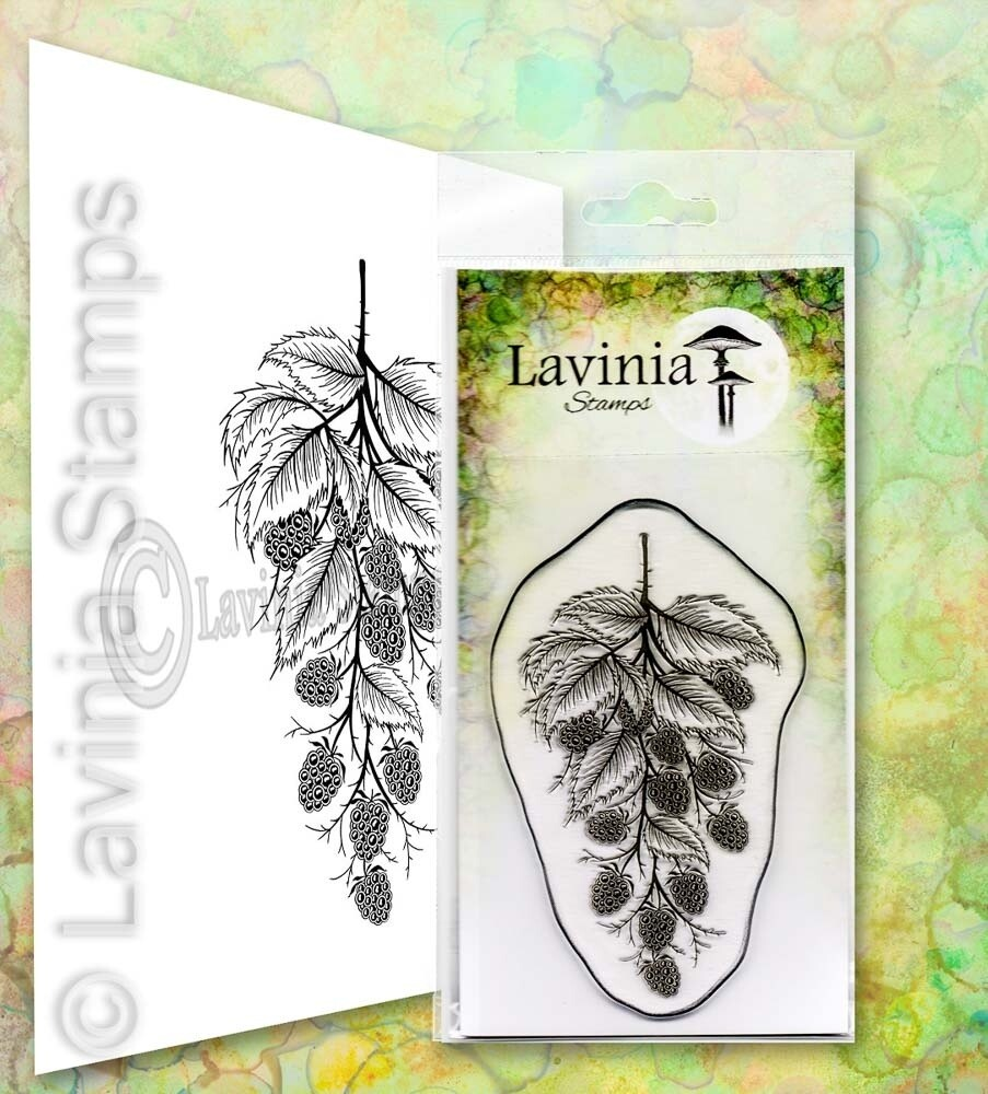 Lavinia Stamps - Blackberry