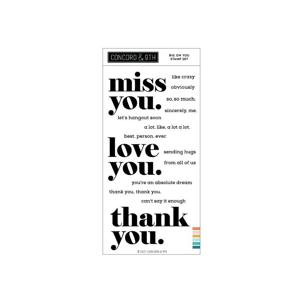 """Concorde $ 9th - Big on You stamp set - 4""""x8"""""""