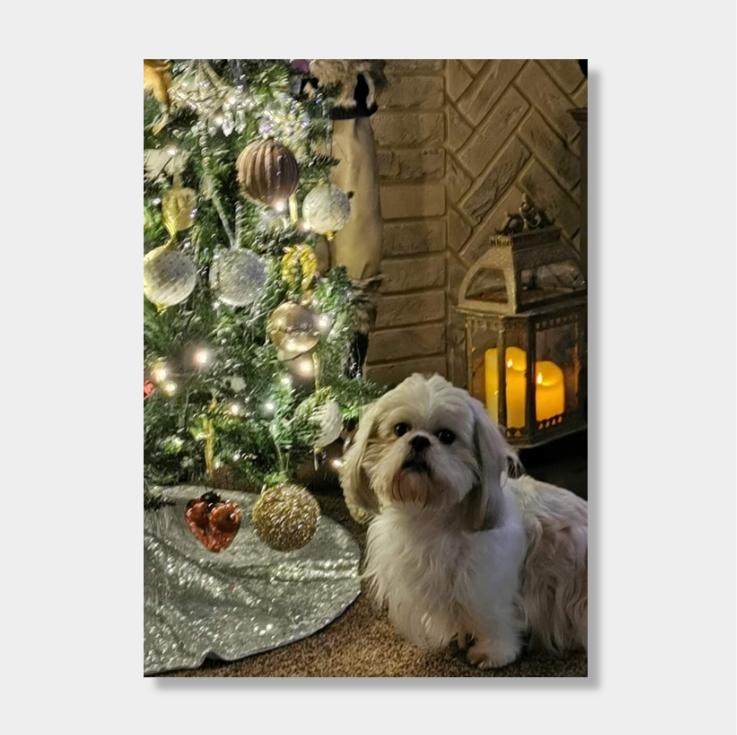 Greetings card personalised